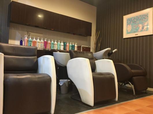 hair designer's ferry