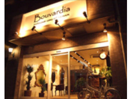 Bouvardia