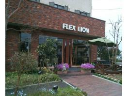 FLEX LION