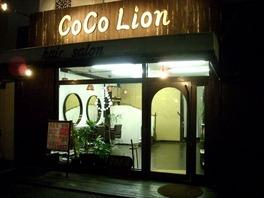 CoCo Lion