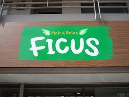 Hair&Relax FICUS