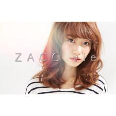 ZACC vie