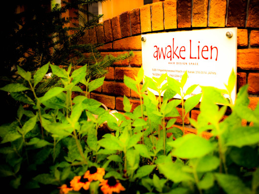 awake Lien