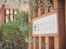 e's (evolving stones)