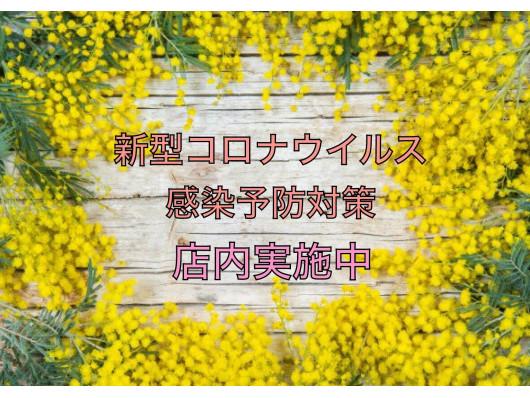 seed hair&spa(ビューティーナビ)