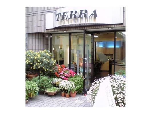 TERRA(ビューティーナビ)